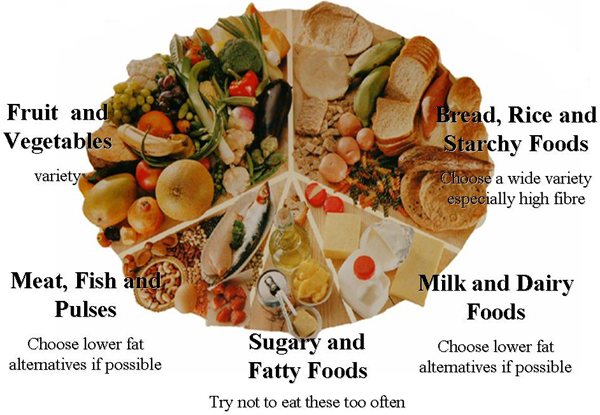 healthy-food-wheel