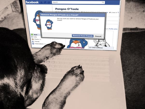 Defriended by a dog