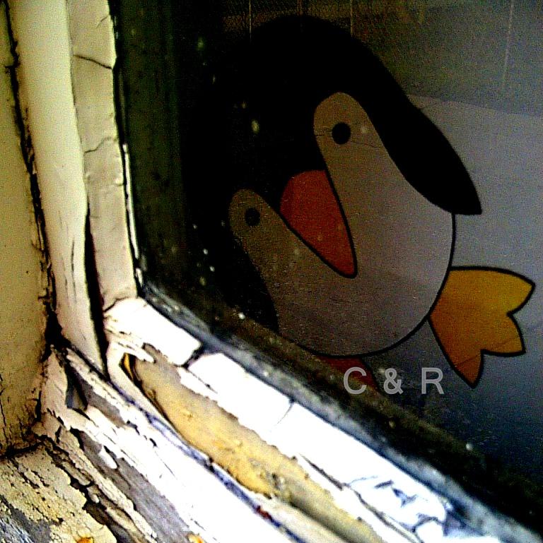 Shame Penguin
