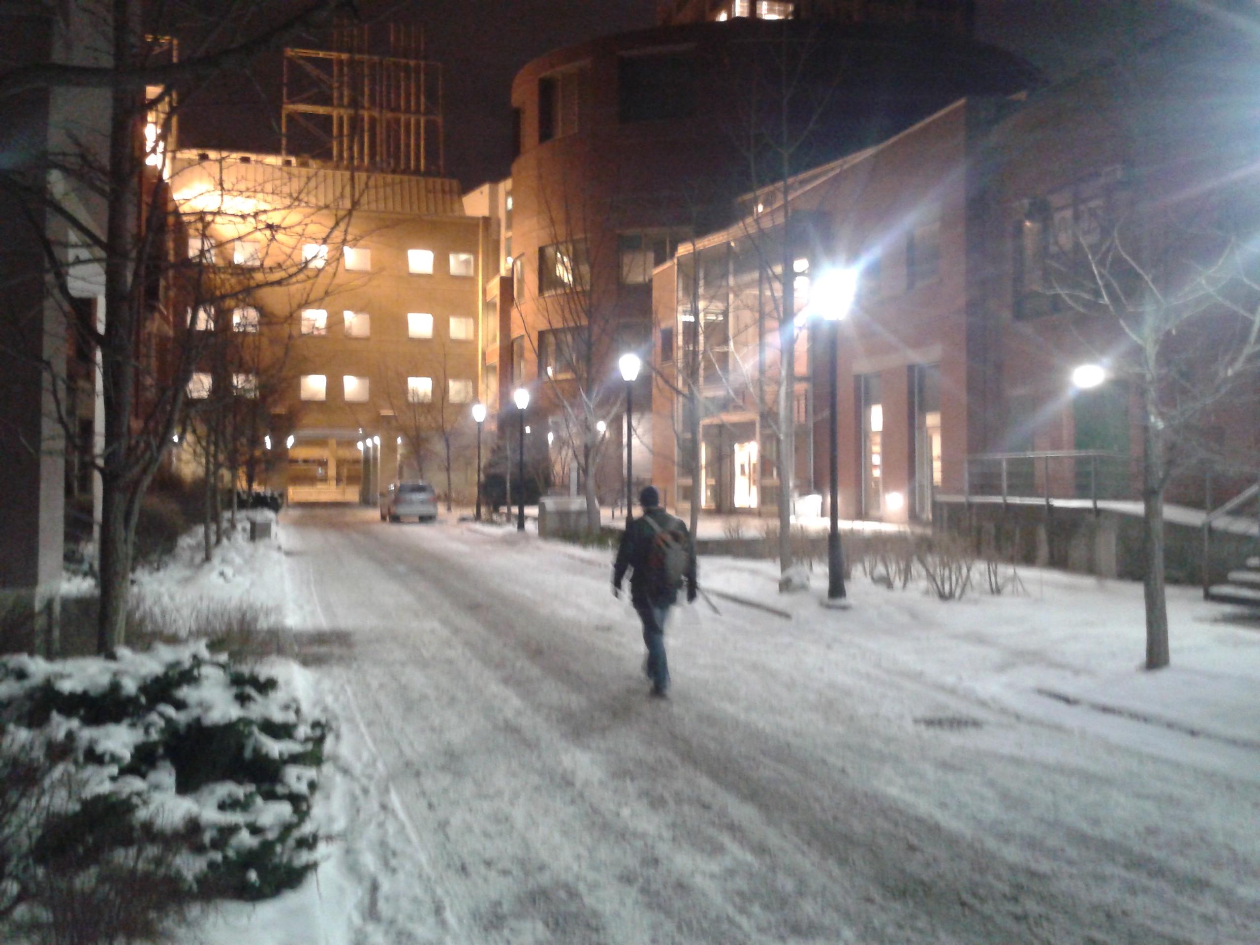 Snow Walk 1