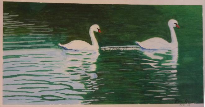 Swan Rian Akian